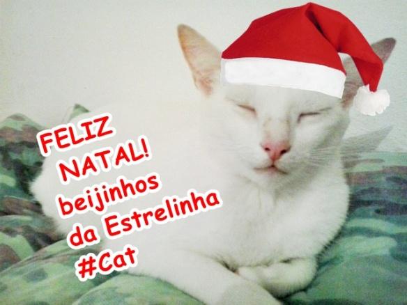 cat feliz natal